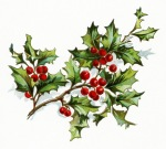 OldDesignShop_HollyBerries1904
